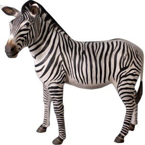Zebra i naturlig storlek 160 cm