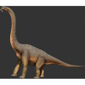 Dinosaurie  Braciosaurus 5,47 m