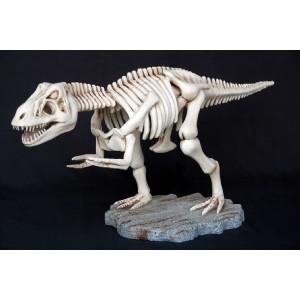 Dinosaurie T-Rex Skelett 94 cm