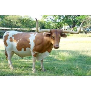 Texas långhorns ko 334 cm
